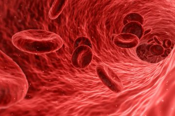 Live Blood Cell Analysis