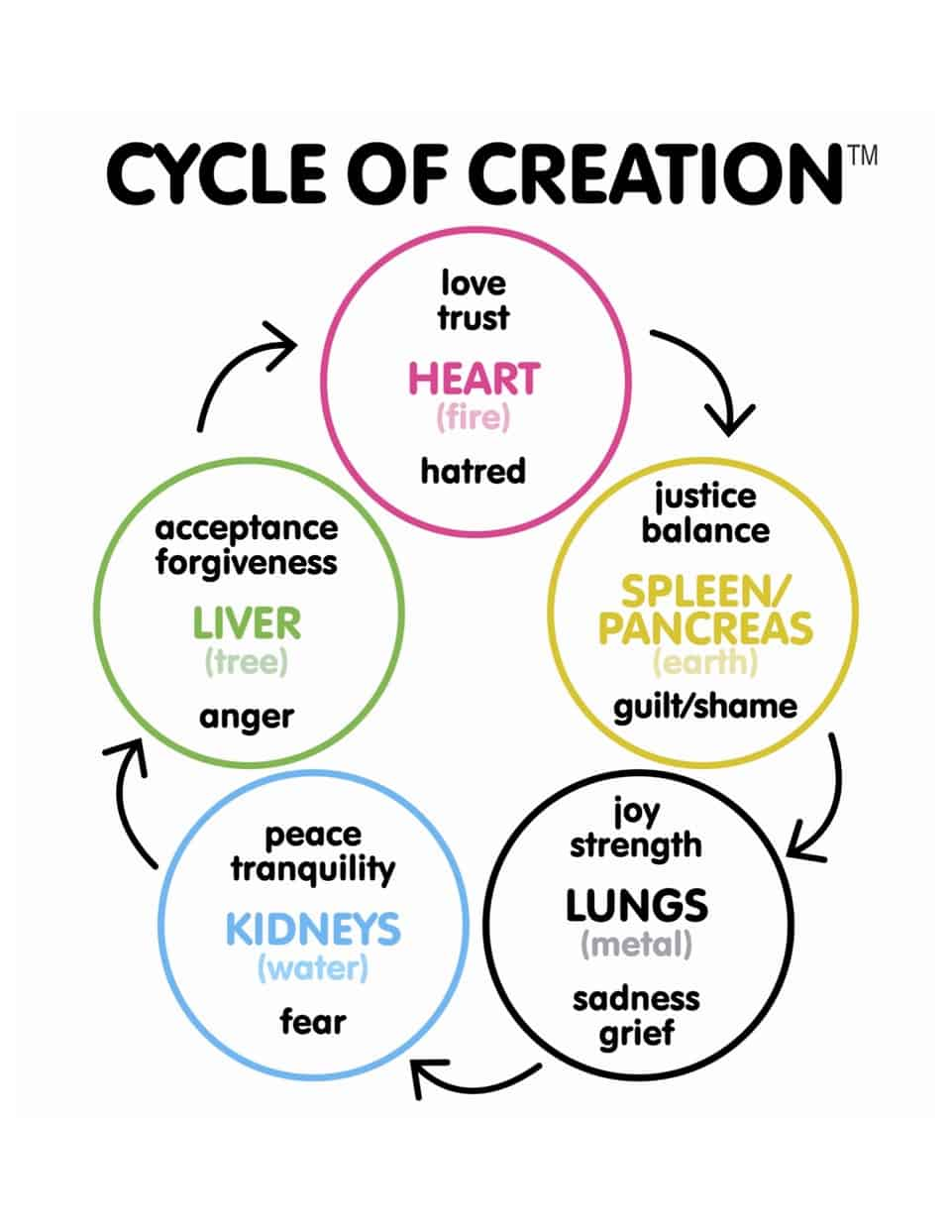 Cycleof CreationTM - Ottawa Holistic Wellness